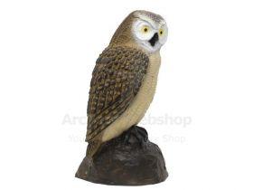 SRT Target 3D Little Screech Owl