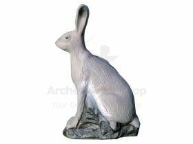 Eleven Target 3D Rabbit