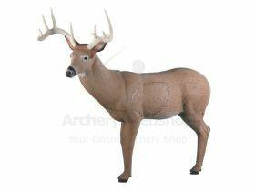 Rinehart Target 3D Big Ten Buck