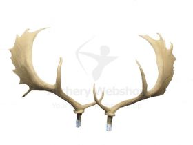 SRT Target 3D Replacement Deer Antler