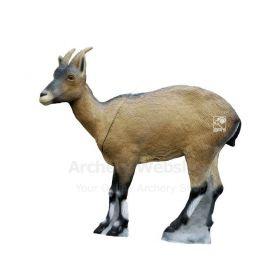 SRT Target 3D Iberian Ibex Female