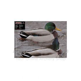 Maximal 25 x 35 Duck