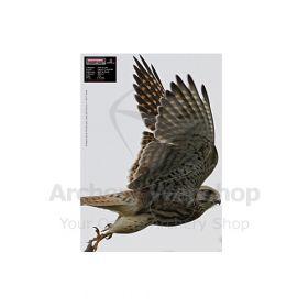 Maximal 30 x 40 Flying Falcon