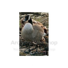 Maximal 40 x 60 Canadian Alert Goose