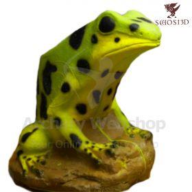 Schosi 3D Target Posion Dart Frog