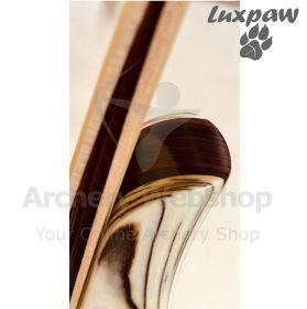 LuxPaw Take Down Bow Hybrid TD01