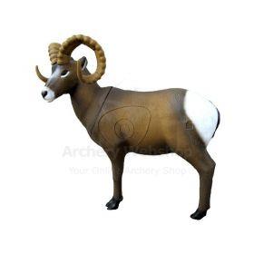SRT Target 3D Rocky Mountain Sheep